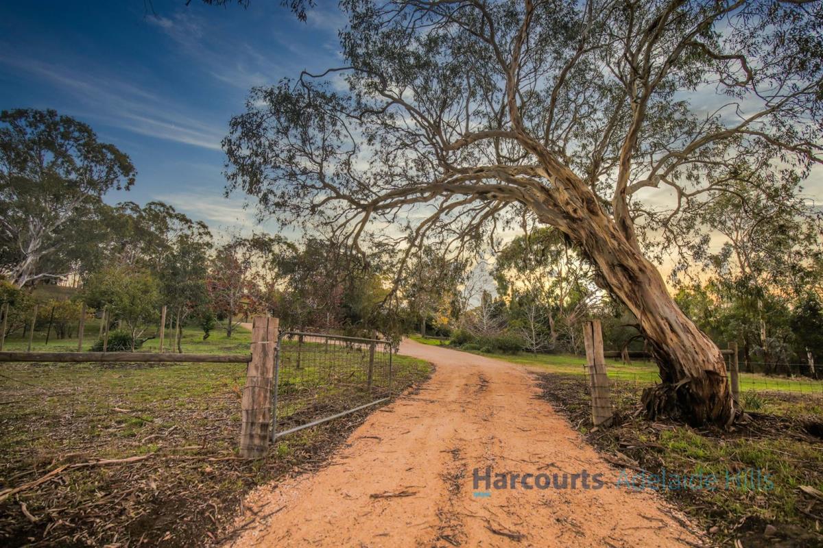 101-Daddow-Road-Mount-Barker-5251-SA